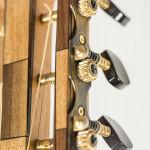 Gitarren (11 von 29)