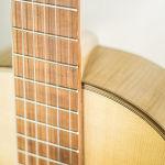 Gitarren (16 von 29)
