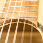 Gitarren (25 von 29)